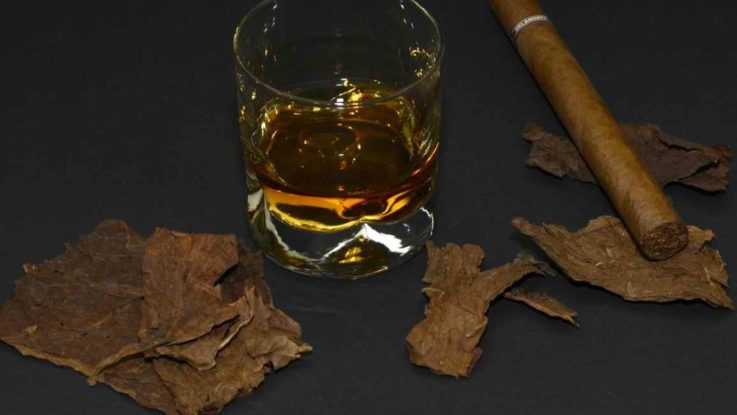 Cragganmore Whisky Single Malt